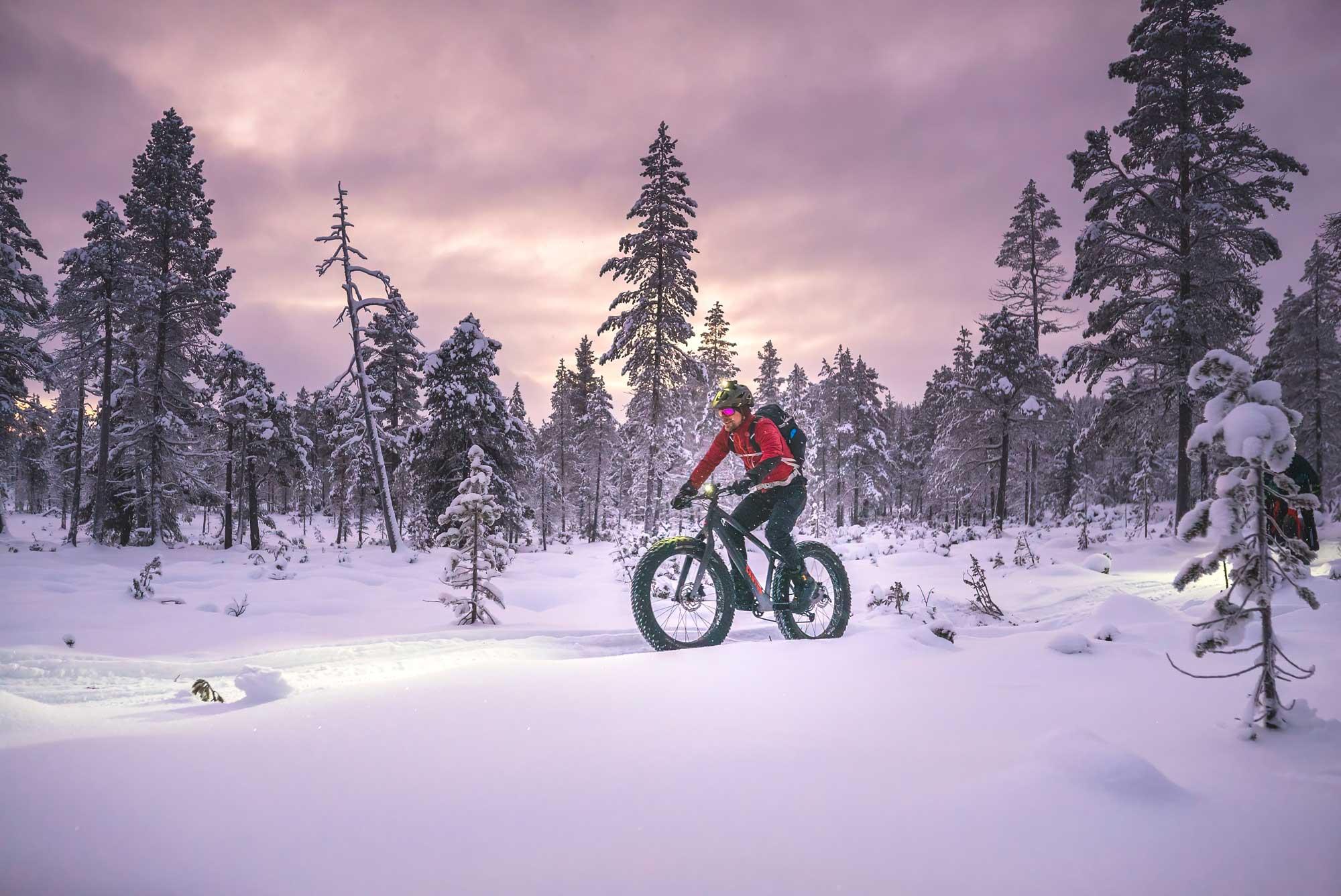 Fatbike talvipyöräilyä Kiilopään ja Saariselän maisemissa