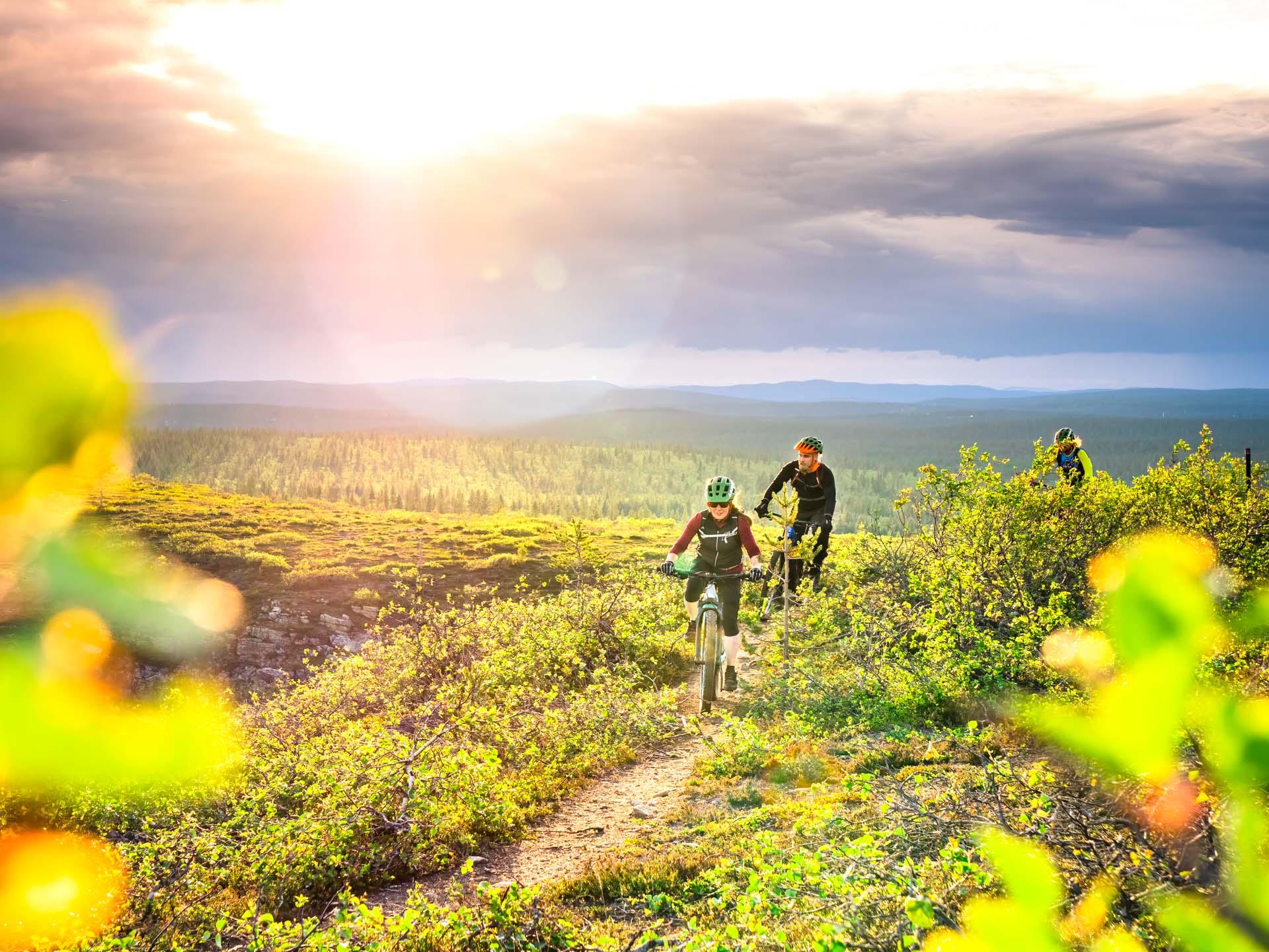 Kiilopää summer mountain biking